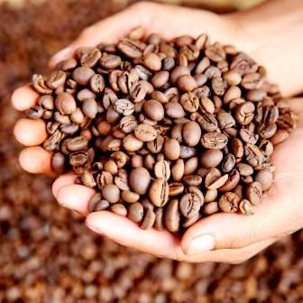 Ampas kopi bisa dipakai bersih-bersih