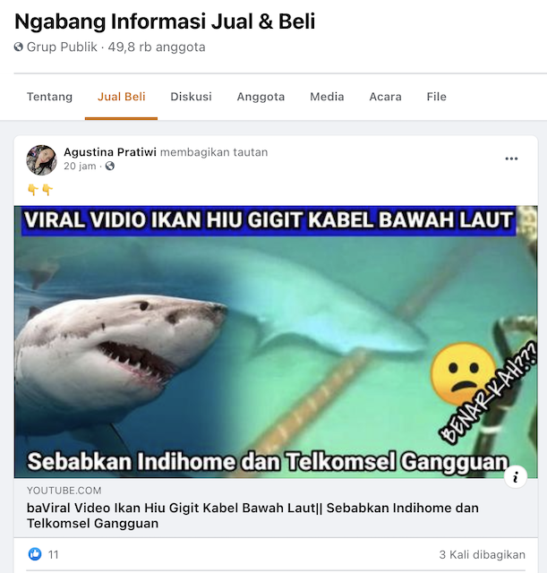 [Cek Fakta] Video Ikan Hiu Gigit Kabel Bawah Laut Penyebab Gangguan Internet IndiHome dan Telkomsel? Begini Faktanya
