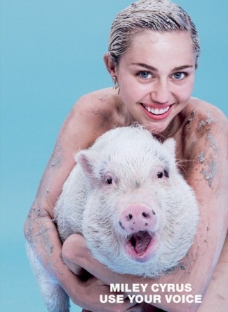 Miley Cyrus Pose <i>Topless</i> Sambil Peluk Babi