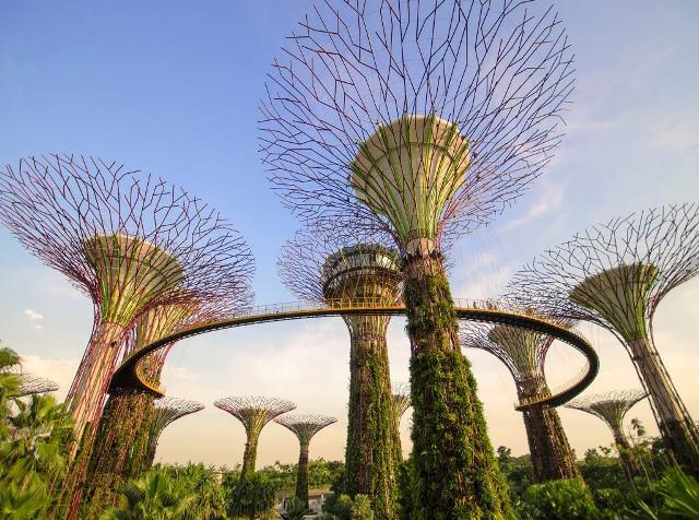 Mengunjungi Supertree Grove di Singapura