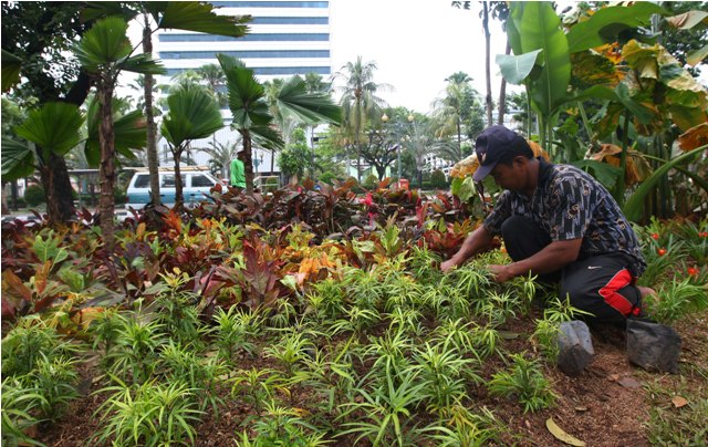 Pembebasan Lahan Jalur Hijau di DKI Mangkrak