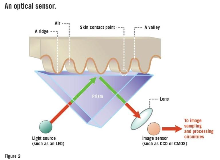 Mengenal Tiga Macam Sensor Sidik Jari di Ponsel