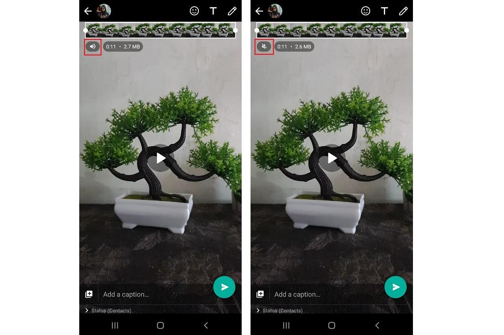 Ini Cara Manfaatkan Fitur Mute Video WhatsApp