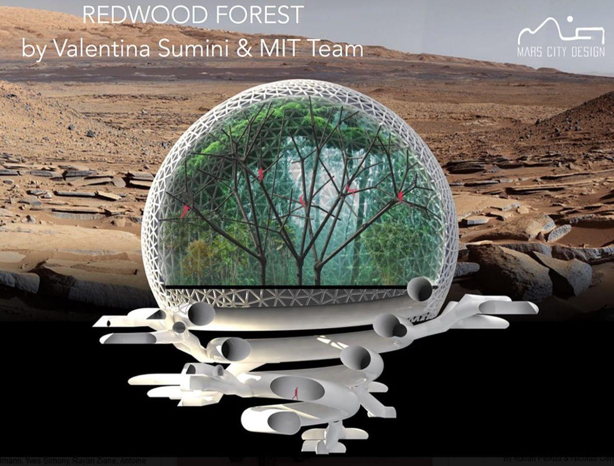 Redwood Forest, Desain Kota Mars Rancangan Ilmuwan MIT