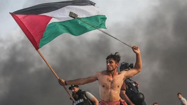 Pejuang Ikonis Palestina Terluka Diserang Israel