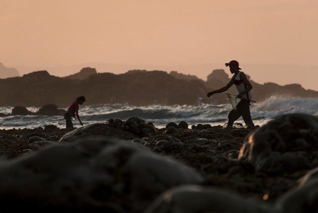 Berburu Cacing Warna-warni Perwujudan Putri Cantik di Lombok