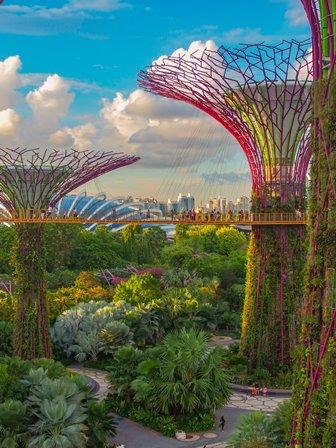 Dan Buettner: Singapura Dianggap Negara Paling Bahagia di ASEAN