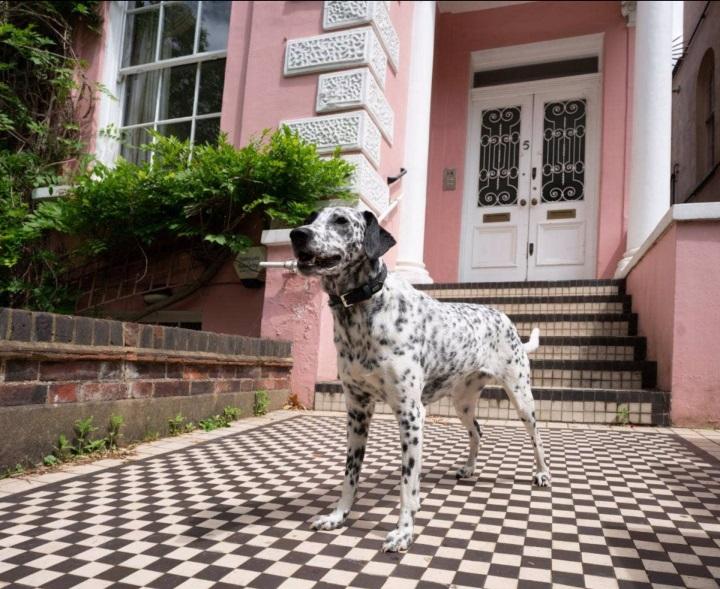 Rumah Ini Jadi Inspirasi Novel 101 Dalmatians