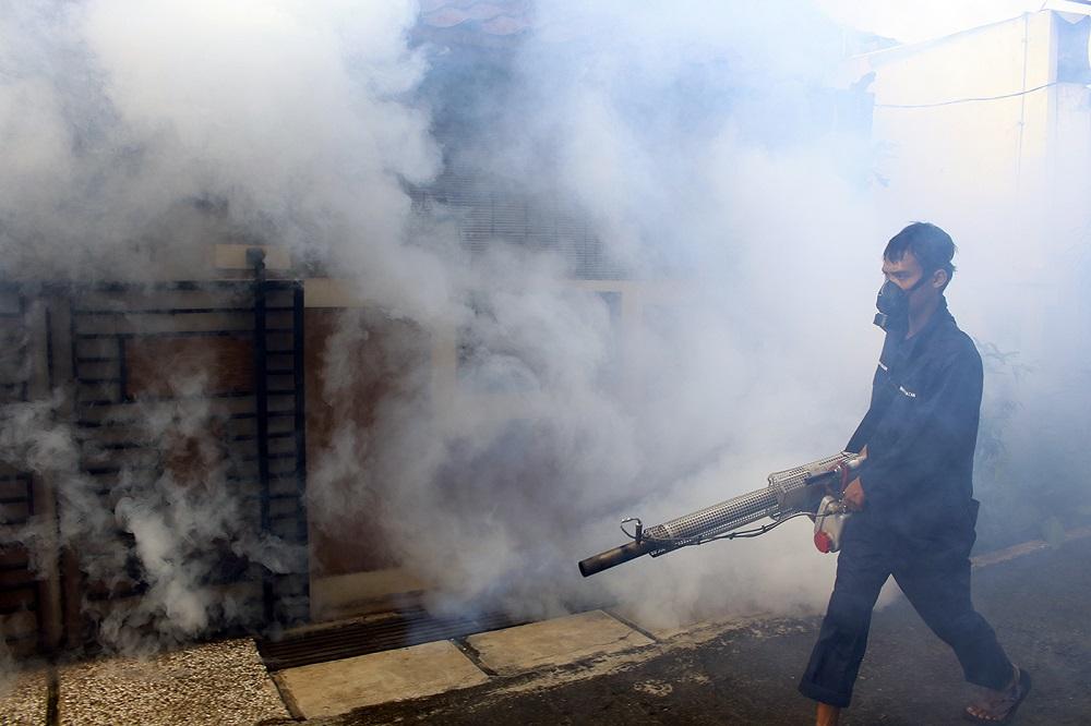 Pengendalian Sarang Nyamuk DBD Disebut Belum Maksimal