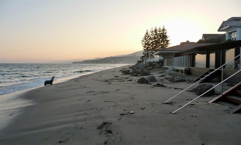 Jason Statham Renovasi Rumah Pantainya di Malibu