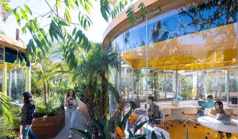 holLA, Ruang Perkantoran Unik Berwarna Kuning