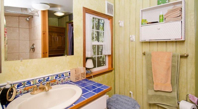 Mushroom Dome Cabin, Kabin Jamur Terpopuler di Airbnb