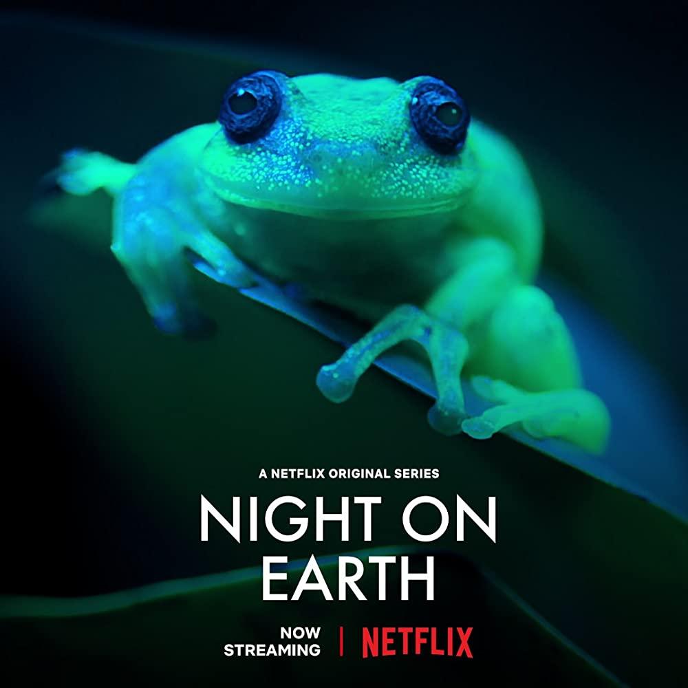 Malam Minggu Ditemani 4 Series Netflix Terbaik, Wajib Nonton!