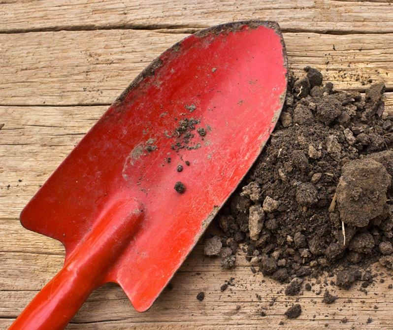 6 Manfaat Minyak Zaitun untuk Peralatan di Rumah