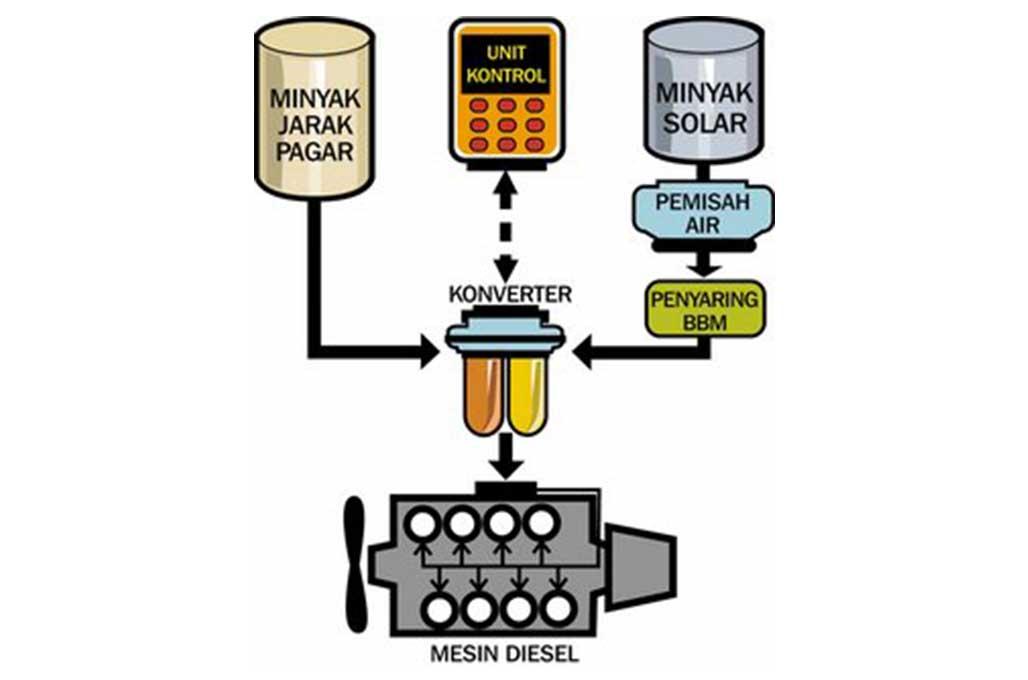 Rencana Biofuel 100 Persen, De Javu Jatropha Oil 2006