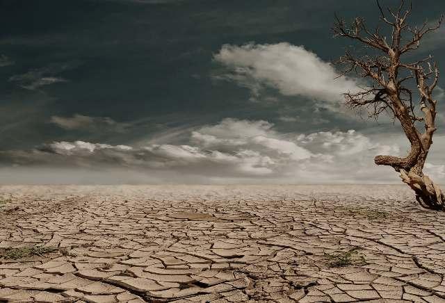 Fenomena Tuntutan Atas Perubahan Iklim