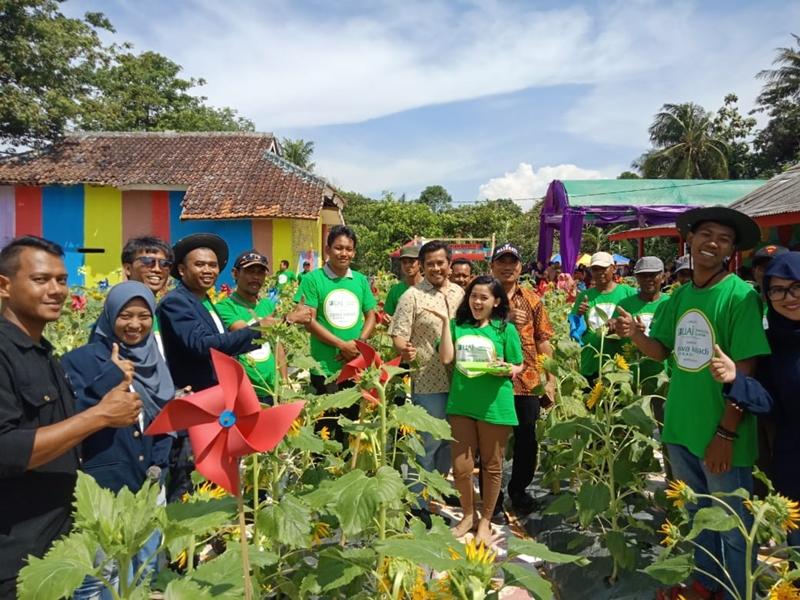 Menyulap TPS Liar Jadi Taman Bunga Matahari